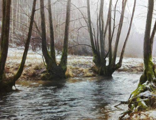 La premiére neige Ardennes