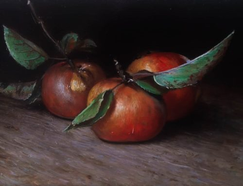 Still life with star apples